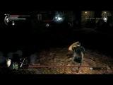 Альтернативное прохождение Demon's Souls от BlackSilverUfa. Боссы.1_1